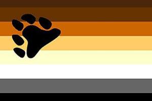 banderas para bear