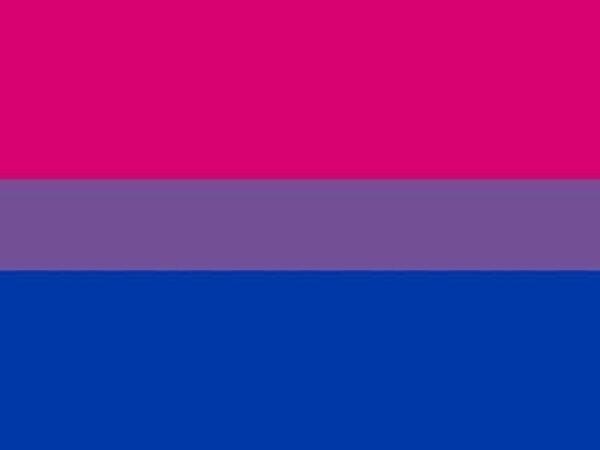 bandera para bisexuales