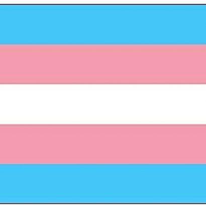 bandera para transexuales